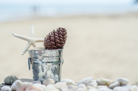 Vacation memories from the sea. Shells zinc bucket for postcard or Poster