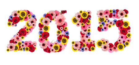 2015, new year made from flowers isolated on a white background photo