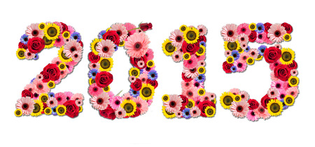 2015, new year made from flowers isolated on a white background,Drop Shadow photo