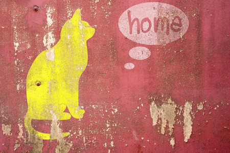 drawing Cat homesick on cracked concrete ,vintage wall background photo