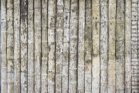 heartwood: Wood wall texture from Bark of Coconut tree for background Archivio Fotografico