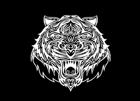 detailed image: Hand drawn Tiger head Tattoo.psychedelic tiger isolated, Vector illustration. Illustration