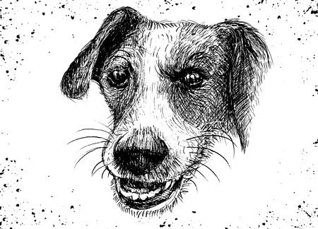 벡터 일러스트 레이 션의 손으로 그린 정직한 개, 스케치의 개 펜으로 스톡 콘텐츠 - 77389239