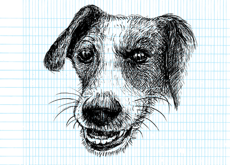 Vector illustration of a hand drawn honest dog. Sketch of Dog by pen