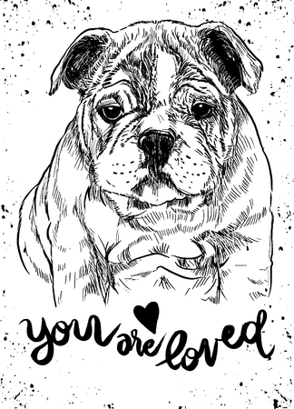 Vector illustration of a hand drawn cute dog. Sketch of Dog by pen