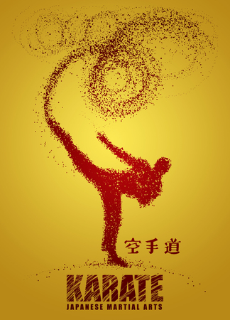 Silhouette of a karateka doing standing side kick .Vector graphics composed of particles.Vector illustration Banco de Imagens - 81928172