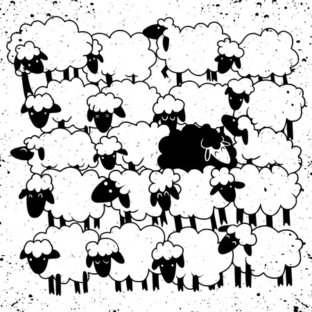 Black sheep amongst white sheep�,Single black sheep in white sheep group. dissimilar concept
