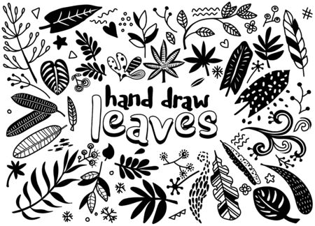 Hand sketched vector vintage elements ( laurels, leaves, flowers, swirls and feathers). Wild and free. Perfect for invitations, greeting cards, quotes, blogs, Wedding Frames, posters