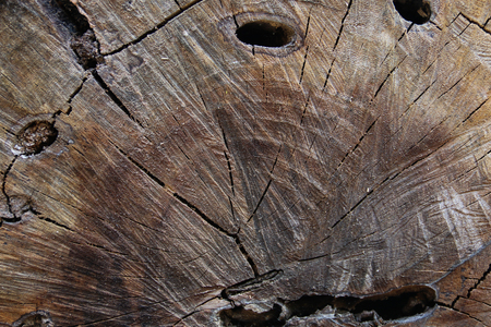 textures: Brown striped wood textures Stock Photo