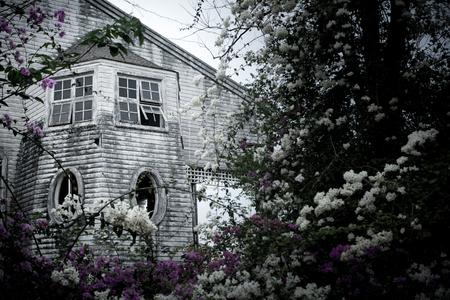 Haunted house Stock Photo - 78511224