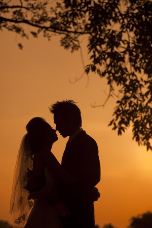 silhouette of a young bride and groom Stock Photo - 8554101