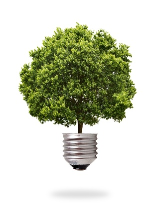 ecological problem: green tree growing out from a bulb Stock Photo