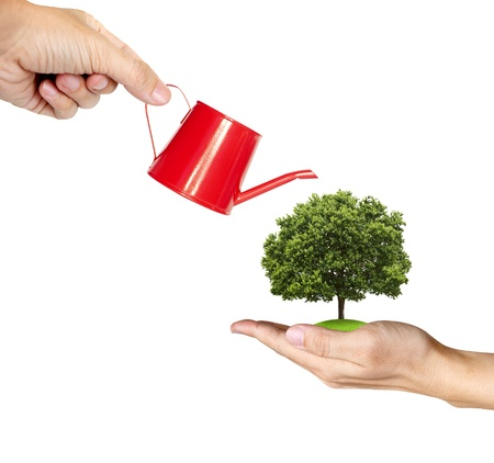 watering can: hand watering a tree on another hand