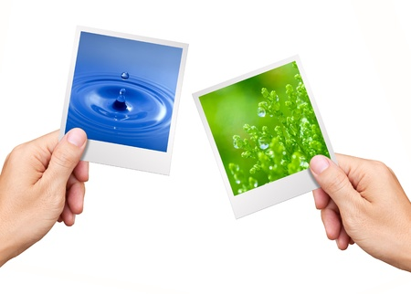Environment Concept, Hands holding nature photos water and plant photo