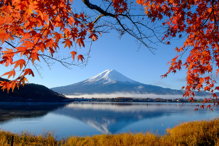 Mt.Fuji and autumn foliage at Lake Kawaguchi Stok Fotoğraf - 40875610