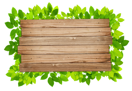 leaves frame: Plank Wood Background with green leaves frame