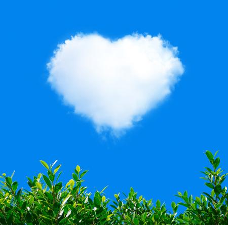 Cloud in Heart Shape on blue sky with green plant Stok Fotoğraf
