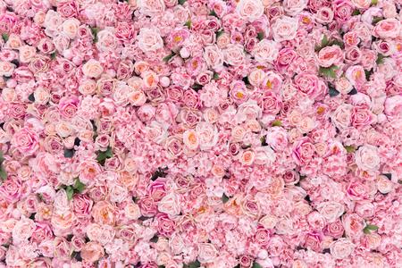 Beautiful Pink flowers background Stok Fotoğraf