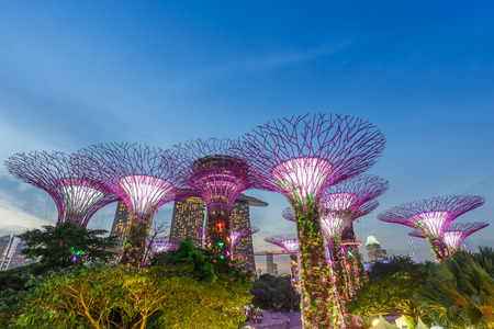 Supertree grove at garden by the bay after sunset