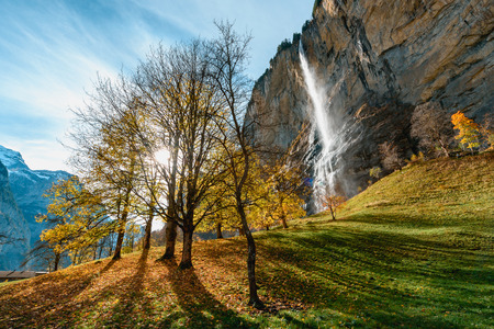 Beautiful autumn time at village of Lauterbrunnen in Swiss alps, gateway to famous Jungfrau. SSun shine through a big tree with leafs on the ground near Staubbach Falls.