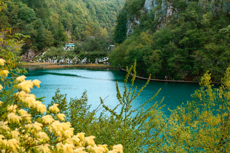 Breathtaking view during summer season at Plitvice Lakes National Park in Croatia Standard-Bild