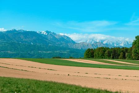 Agriculture at Kamnik in Slovenia Standard-Bild