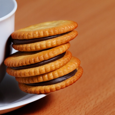 pantry: closeup of chocolate biscuits for coffee break