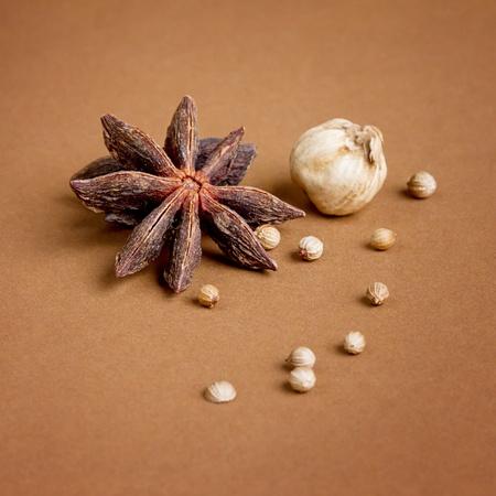 badiane: edible herbal spice of star anise, coriander seed, garlic closeup studio shot Stock Photo