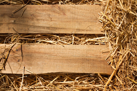 vintage background of wood plank and dry grass, hay, straw textured border with blank space for text or copyspace photo