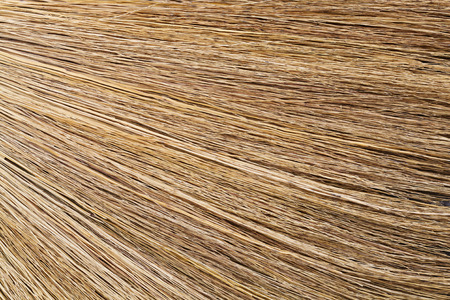 unusual abstract background of dried plant stick photo