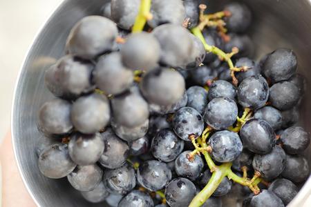 bunch up: bunch of grape close up shot