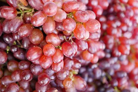 ripe: red grape, closeup shot Stock Photo