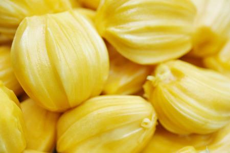 tropical, exotique, délicieux, jacquier jaune gros plan