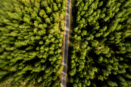 Top View of Rural Road, Path through the green forest and countryside. Sunnt day Stock Photo