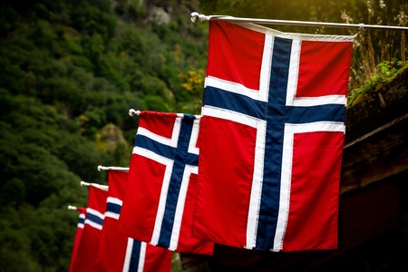 Row of norwegian flags outdoor on green nature Stock Photo