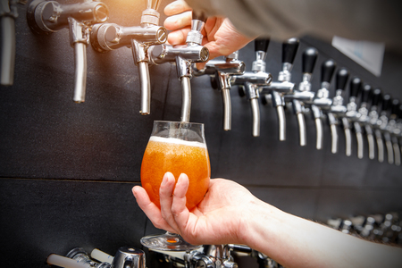 Bartender pouring the fresh beer in pub, Close up of male hands of barman. He is holding a glass and taping beer.