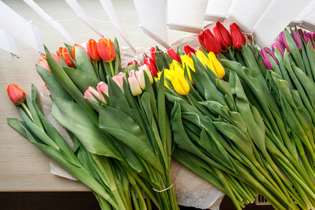 Colorful fresh tulip flowers on the windowsill near the blinds. Flowers for mother's day or women's day