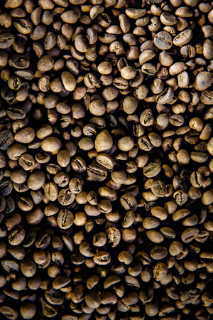 Luwak coffee beans. Top view. The legendary coffee from Bali, Indonesia