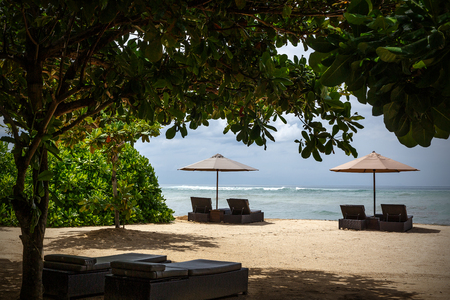 Beach umbrella and sunbed on the beach under exotic trees