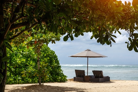 Parasol and sun lounger on the beach under exotic trees