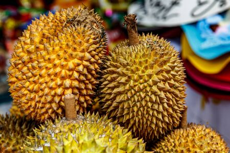 King of fruits, durian. Group of fresh durians in the asian market. Stock Photo