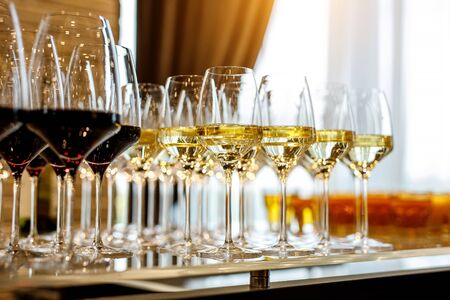 Glasses of white wine on bar counter