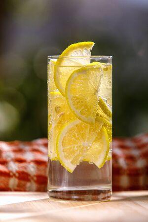 Lemonade with fresh lemon in glass on garden background