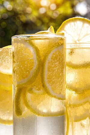 Glasses of lemon water on the sunny garden background. Close-up view Stock fotó