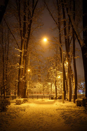 Footpath in a winter city park. Row of lanterns