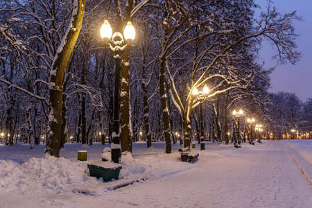 Winter park in the evening covered with snow with a row of lamps