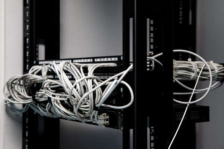 A lot of network cables connected in a big network switch