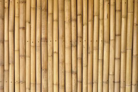 textured wall: bamboo texture