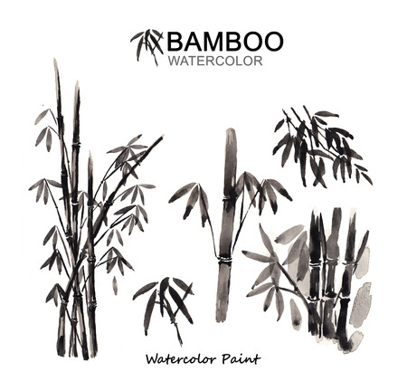 Bamboo paint, Watercolor paint high resolution
