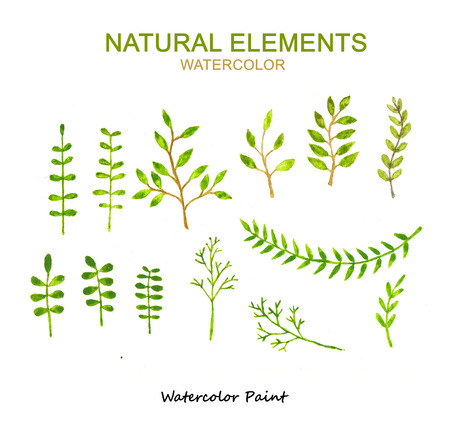 Natural elements, Watercolor paint high resolution